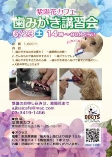 犬の歯みがきセミナー